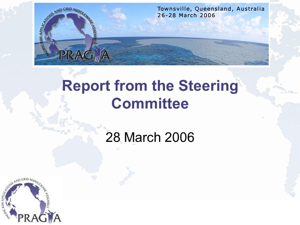 Report from the Steering Committee 28 March 2006