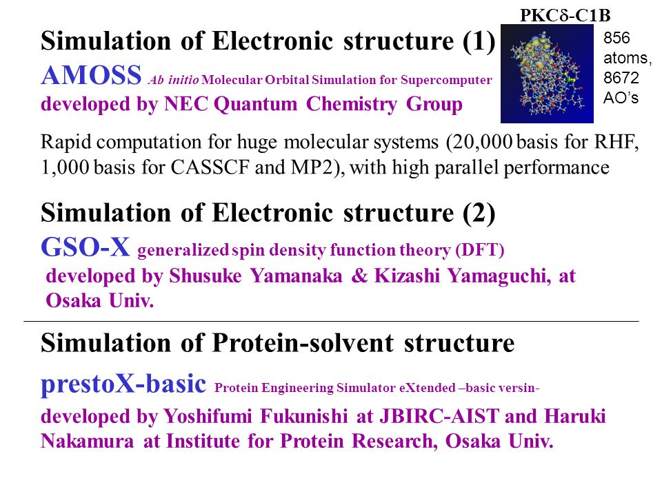 developed by NEC Quantum Chemistry Group Rapid computation for huge molecular systems (20,000 basis for RHF, 1,000 basis for CASSCF and MP2), with hig