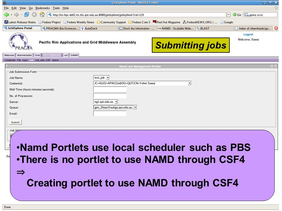 Namd Portlets use local scheduler such as PBS There is no portlet to use NAMD through CSF4 Creating portlet to use NAMD through CSF4 Submitting jobs