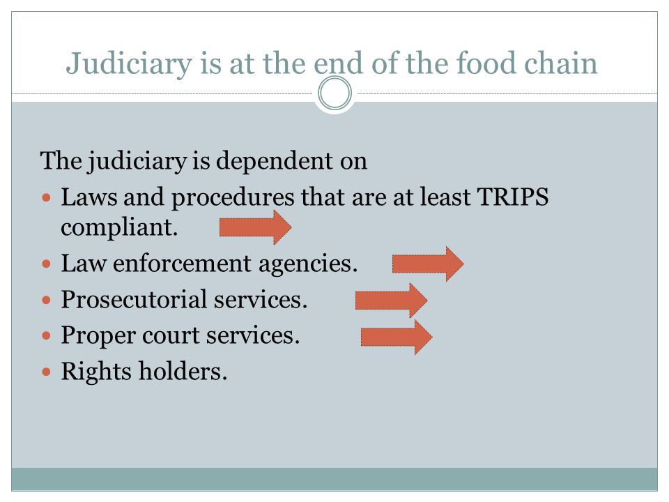 Judiciary is at the end of the food chain The judiciary is dependent on Laws and procedures that are at least TRIPS compliant.