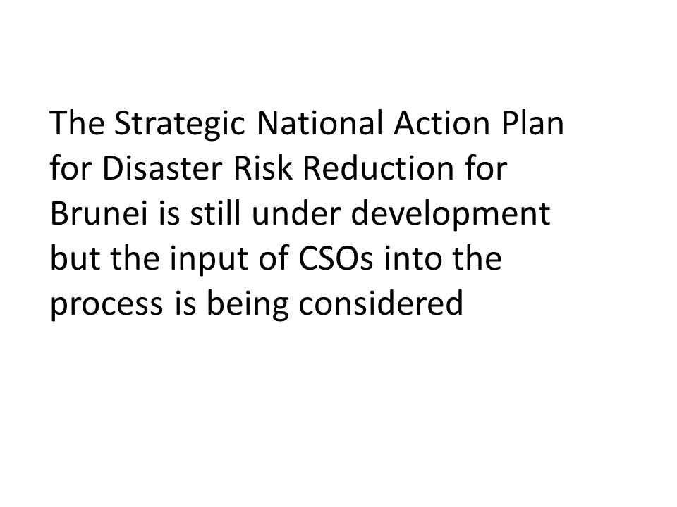 The Strategic National Action Plan for Disaster Risk Reduction for Brunei is still under development but the input of CSOs into the process is being considered