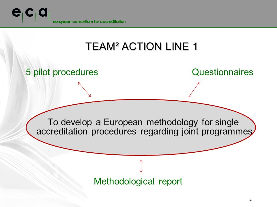 TEAM² ACTION LINE 1 | 4 5 pilot proceduresQuestionnaires To develop a European methodology for single accreditation procedures regarding joint programmes Methodological report