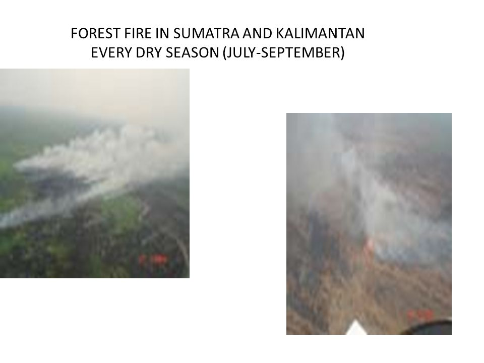 FOREST FIRE IN SUMATRA AND KALIMANTAN EVERY DRY SEASON (JULY-SEPTEMBER)