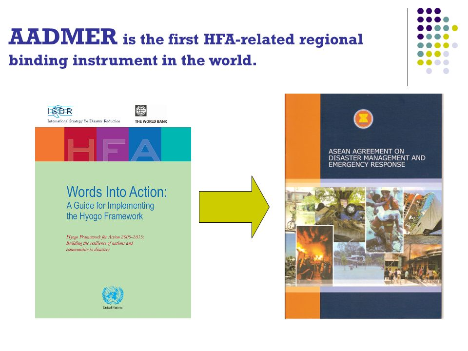 AADMER is the first HFA-related regional binding instrument in the world.