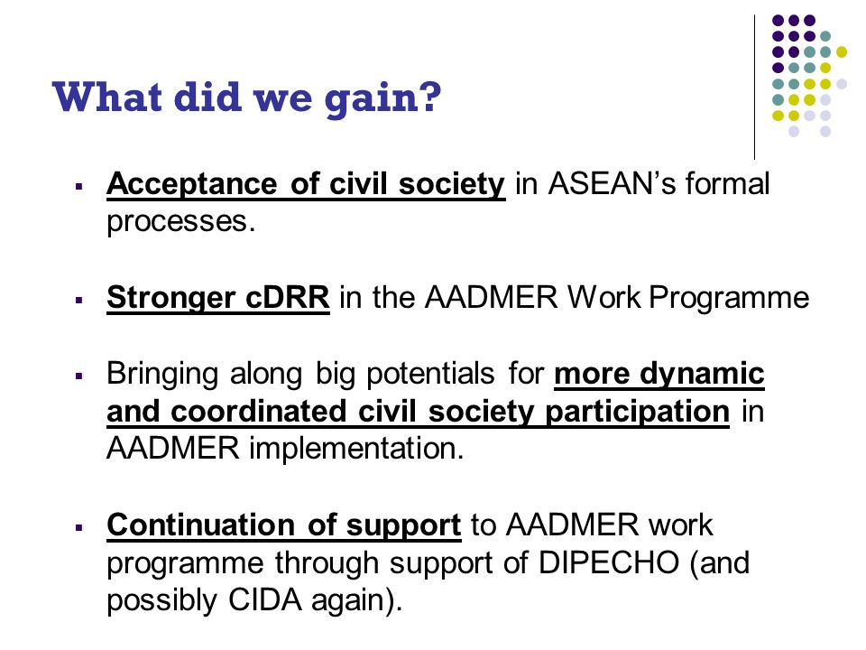 What did we gain. Acceptance of civil society in ASEANs formal processes.