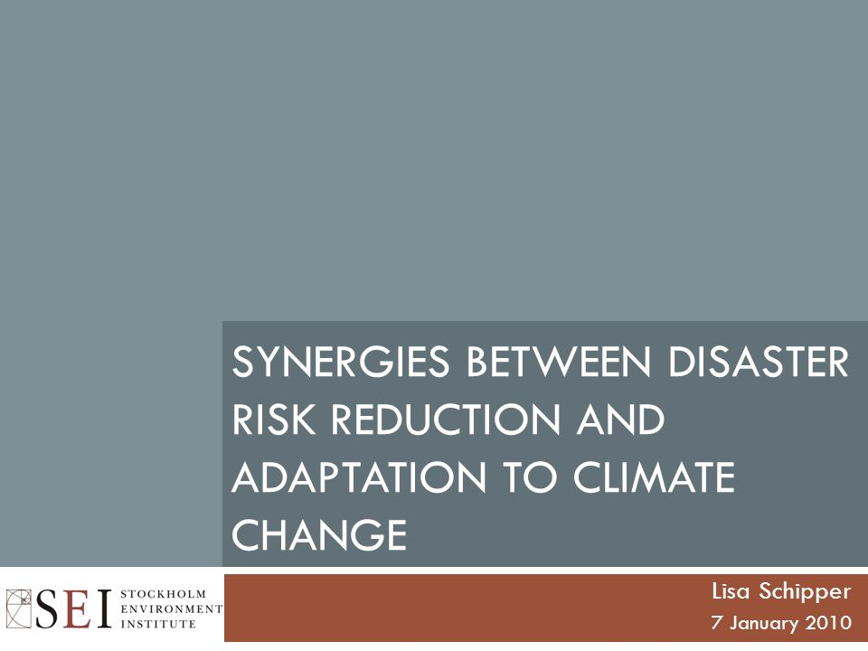 SYNERGIES BETWEEN DISASTER RISK REDUCTION AND ADAPTATION TO CLIMATE CHANGE Lisa Schipper 7 January 2010