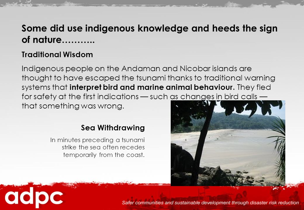Others were prepared Island of Simeulue off Aceh --- only 40 km away from epicenter but deaths only 7 Islanders remembered the earthquake and tsunami in 1907 which killed over 2000, hold annual practice drills and so fled to inland hills after the initial shaking before the tsunami struck.
