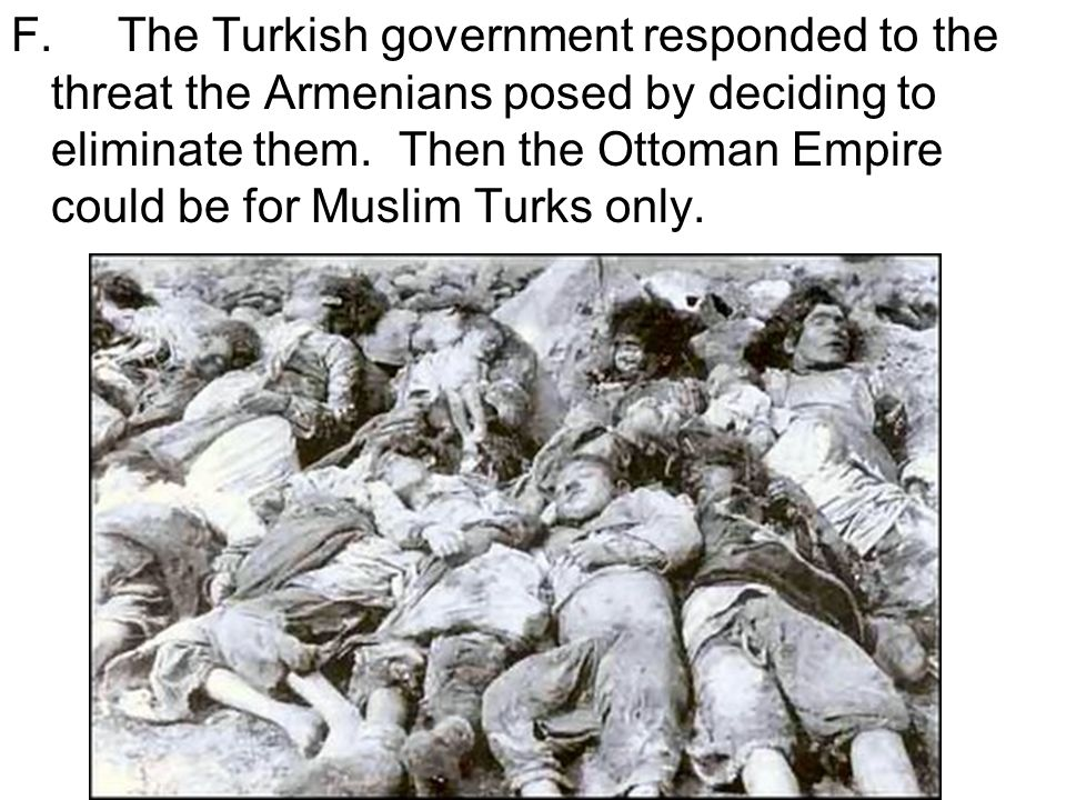 F.The Turkish government responded to the threat the Armenians posed by deciding to eliminate them.