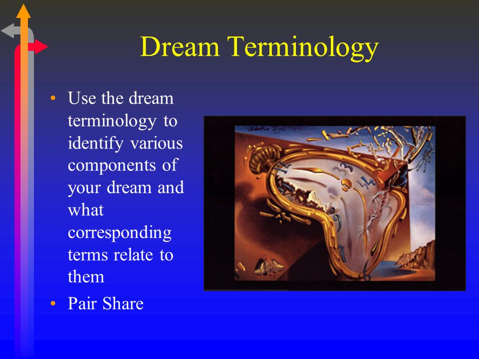 Dream Terminology Use the dream terminology to identify various components of your dream and what corresponding terms relate to them Pair Share