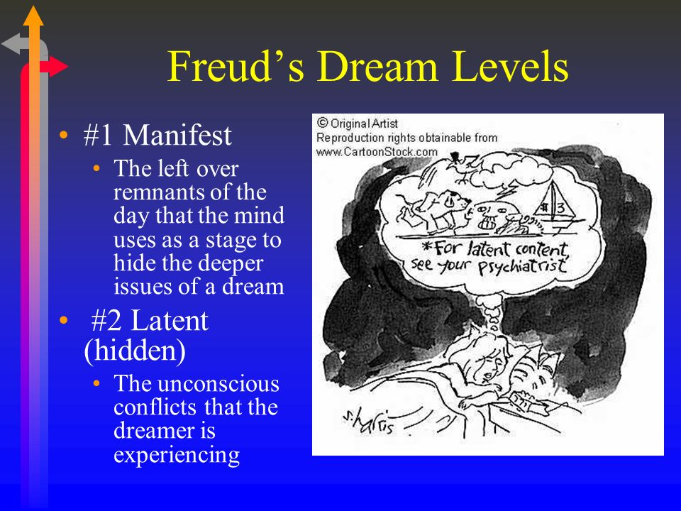 Freuds Dream Levels #1 Manifest The left over remnants of the day that the mind uses as a stage to hide the deeper issues of a dream #2 Latent (hidden) The unconscious conflicts that the dreamer is experiencing