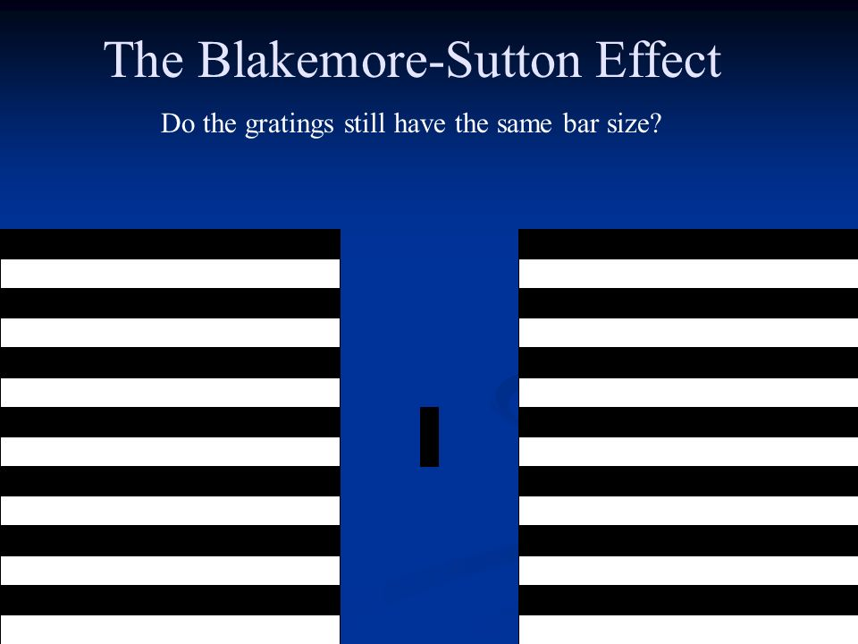The Blakemore-Sutton Effect Do the gratings still have the same bar size?