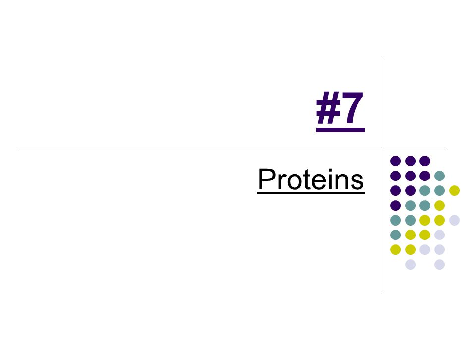 #7 Proteins