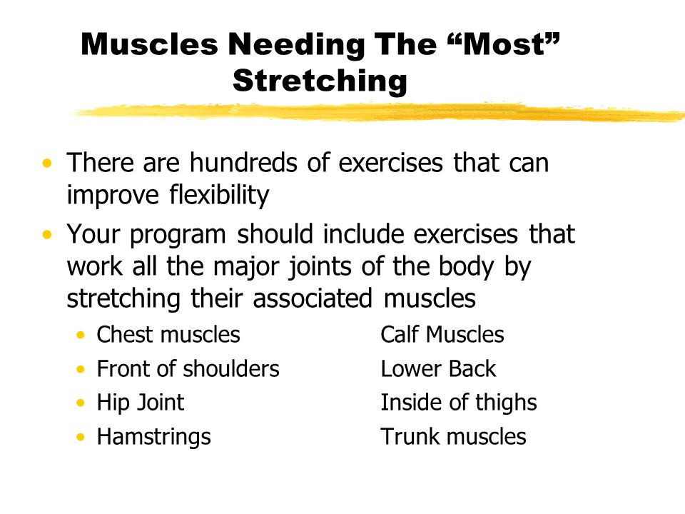 Muscles Needing The Most Stretching There are hundreds of exercises that can improve flexibility Your program should include exercises that work all t