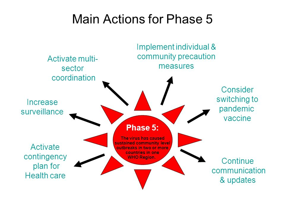 Main Actions for Phase 5 Phase 5: The virus has caused sustained community level outbreaks in two or more countries in one WHO Region.