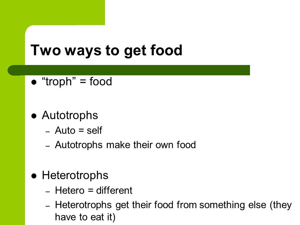 Two ways to get food Autotrophs – Plants Heterotrophs – Animals