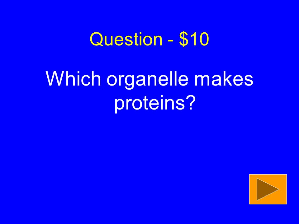 Question - $50 What two biomolecules (besides lipids) are part of membranes?