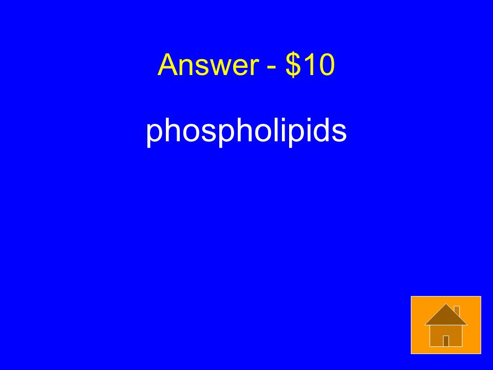 Answer - $10 phospholipids