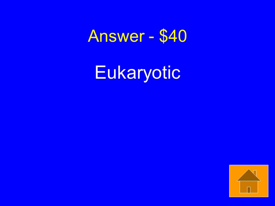 Answer - $40 Eukaryotic