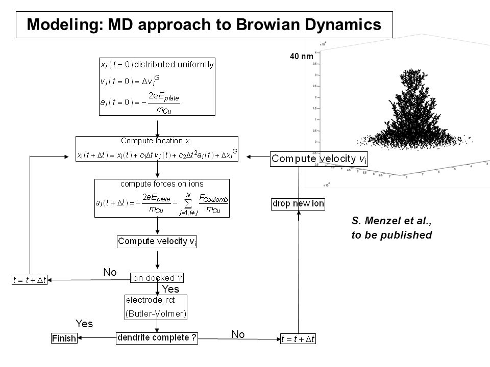 No Yes Modeling: MD approach to Browian Dynamics 40 nm S. Menzel et al., to be published