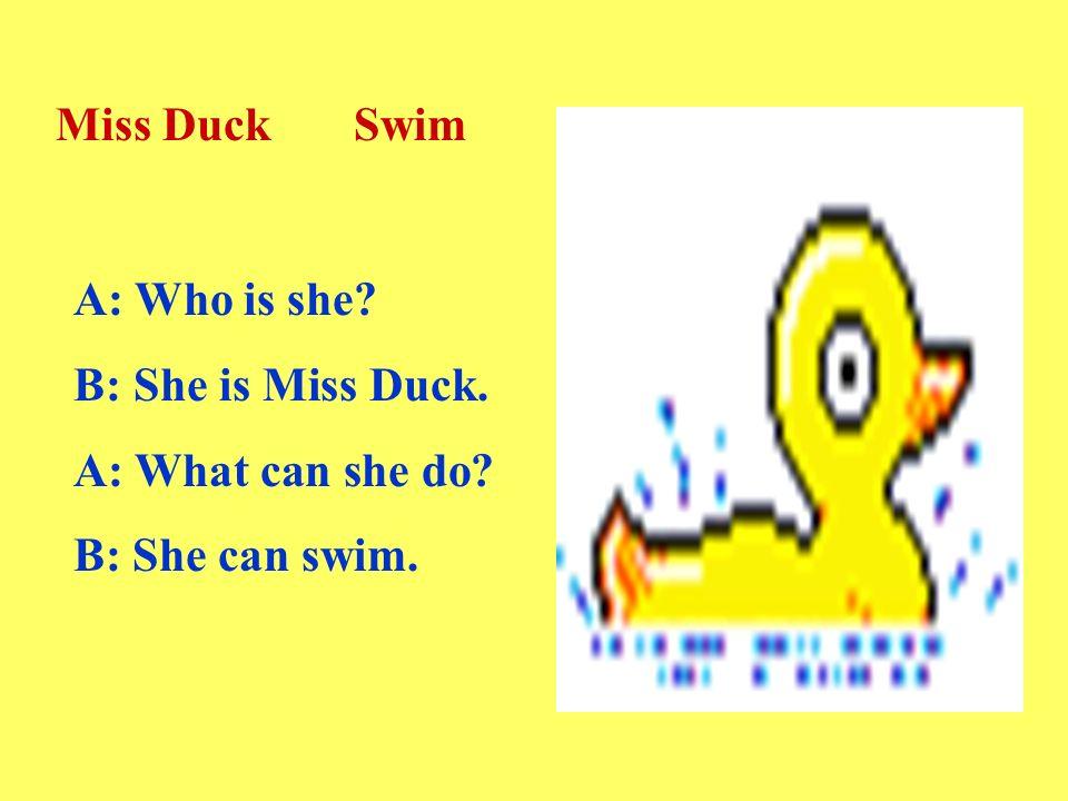A: Who is she B: She is Miss Duck. A: What can she do B: She can swim. Miss Duck Swim