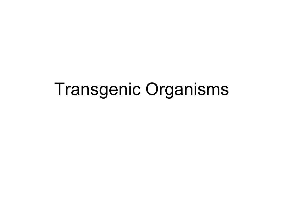 Transgenic Organisms
