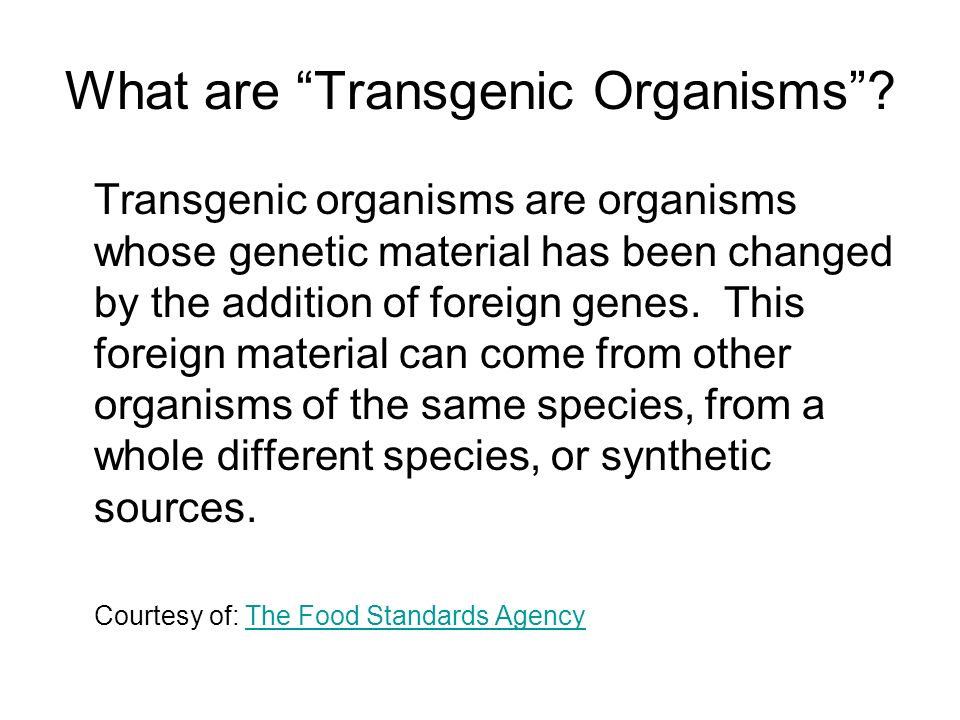 What are Transgenic Organisms? Transgenic organisms are organisms whose genetic material has been changed by the addition of foreign genes. This forei