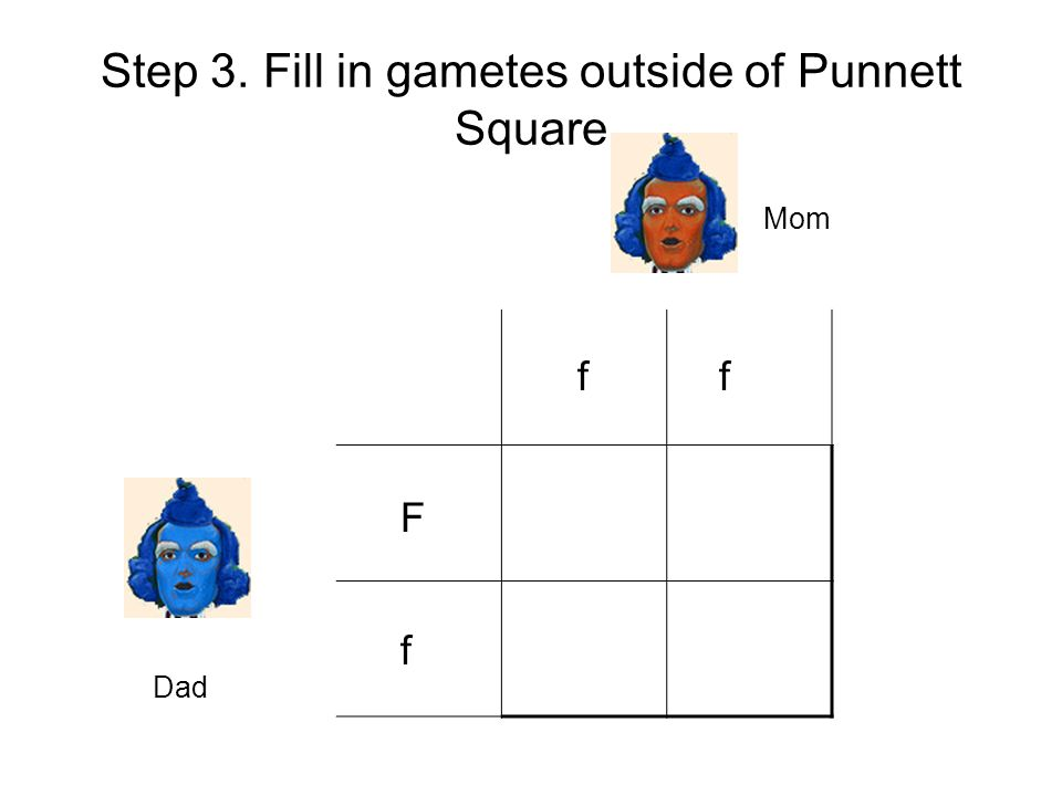 Step 3. Fill in gametes outside of Punnett Square ff F f Mom Dad