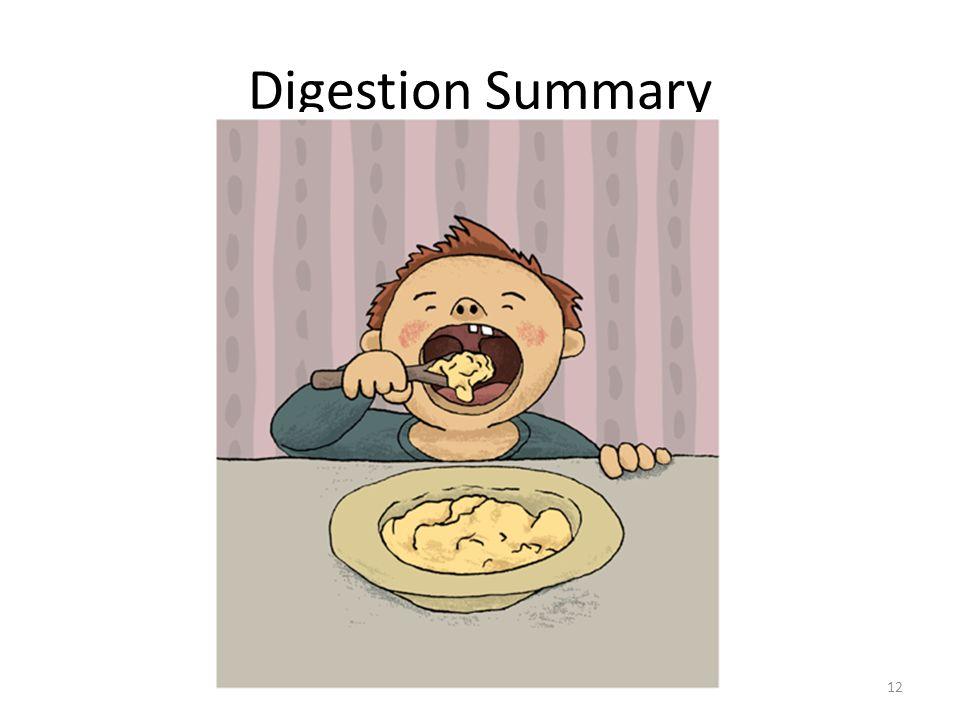 Digestion Summary 12
