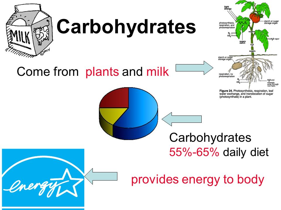 Carbohydrates Come from plants and milk provides energy to body Carbohydrates 55%-65% daily diet
