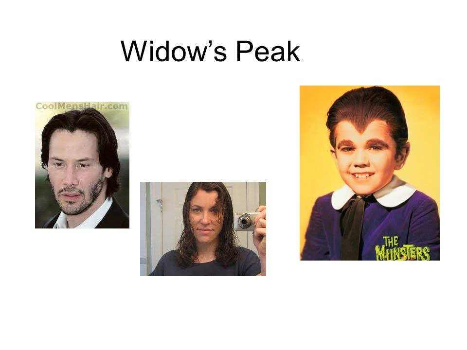 Widows Peak