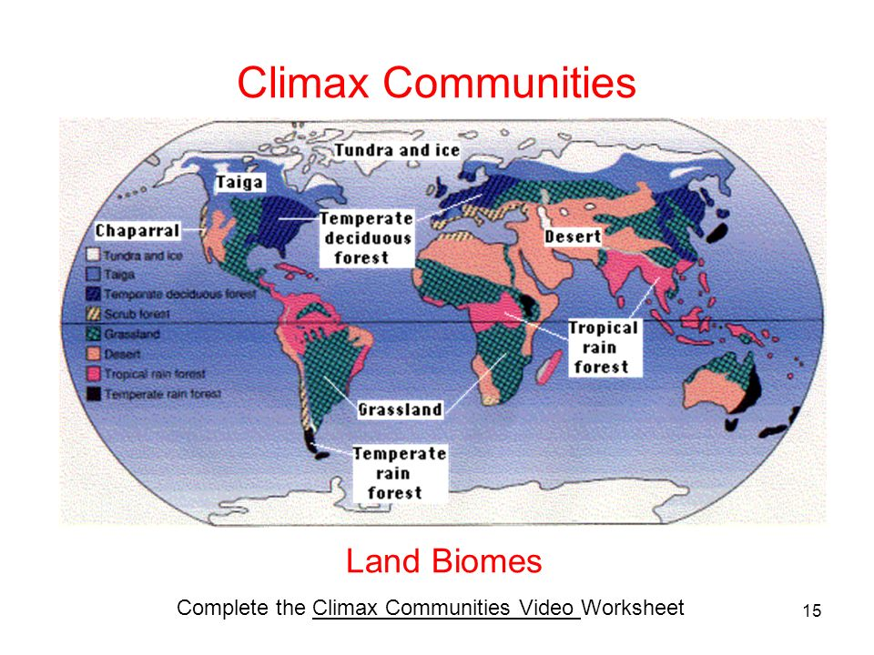 Climax Communities Land Biomes Complete the Climax Communities Video Worksheet 15