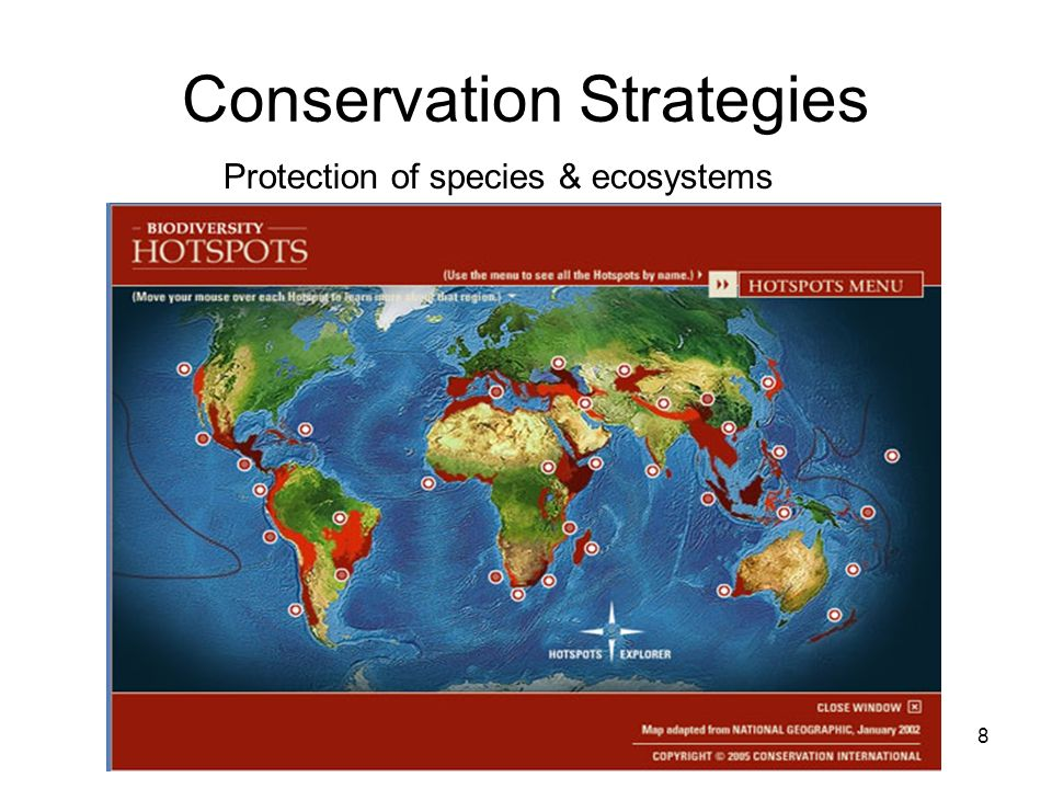 Conservation Strategies 8 Protection of species & ecosystems