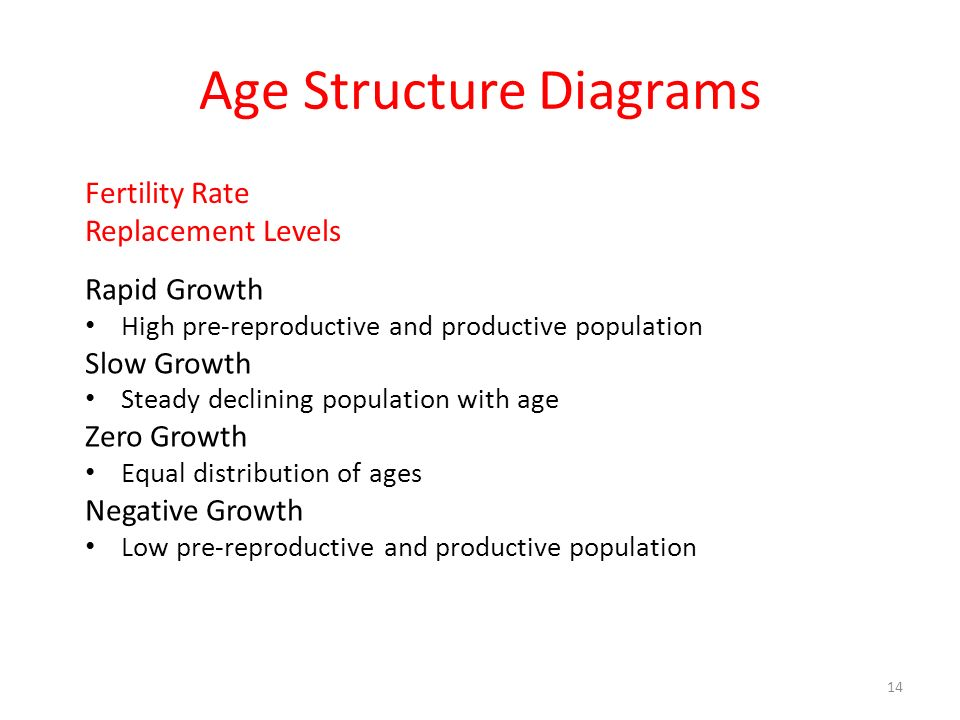 Age Structure Diagrams Rapid Growth High pre-reproductive and productive population Slow Growth Steady declining population with age Zero Growth Equal