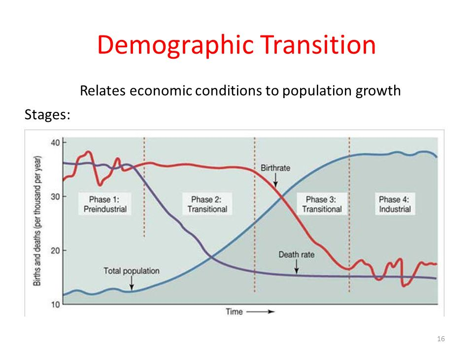 Demographic Transition Relates economic conditions to population growth Stages: Pre-Industrial High birth & death rates Transitional Declining death r