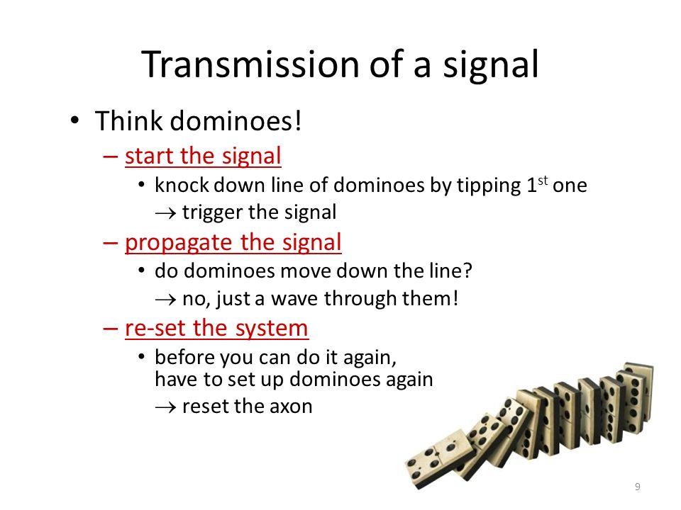 Nerve Impulse HOW does a signal travel along an neuron? 8