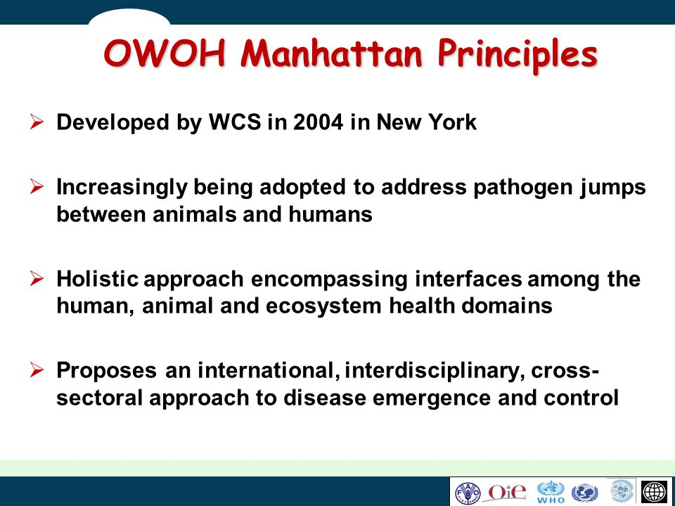 OWOH Manhattan Principles Developed by WCS in 2004 in New York Increasingly being adopted to address pathogen jumps between animals and humans Holisti