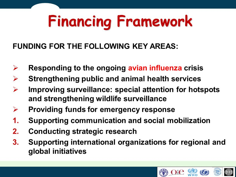 Financing Framework FUNDING FOR THE FOLLOWING KEY AREAS: Responding to the ongoing avian influenza crisis Strengthening public and animal health servi