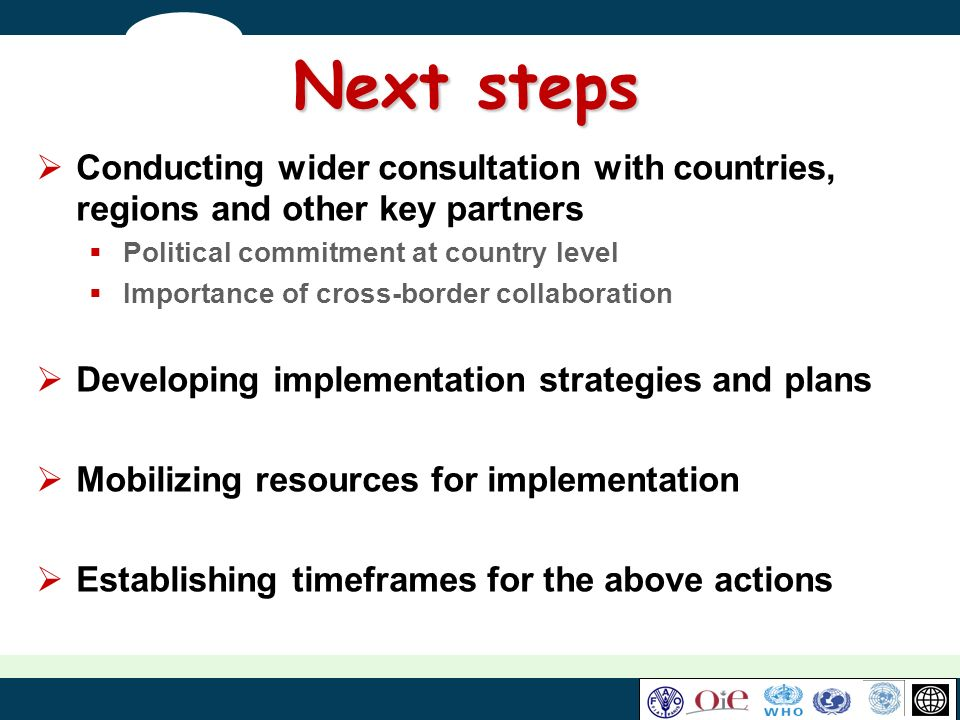 Next steps Conducting wider consultation with countries, regions and other key partners Political commitment at country level Importance of cross-bord