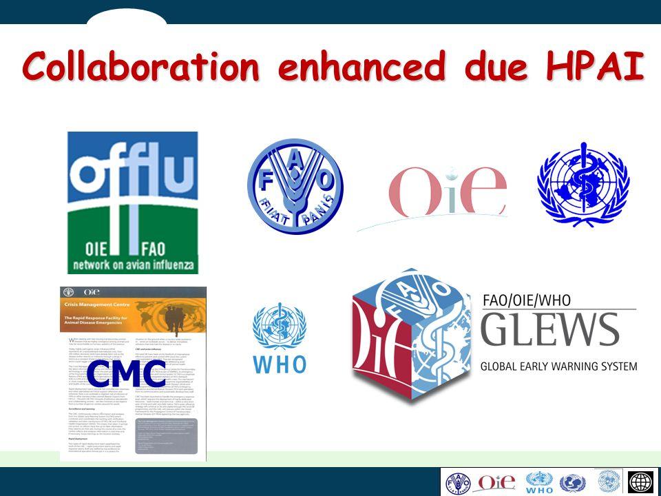 CMC Collaboration enhanced due HPAI