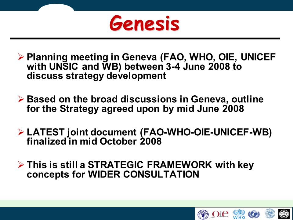Genesis Planning meeting in Geneva (FAO, WHO, OIE, UNICEF with UNSIC and WB) between 3-4 June 2008 to discuss strategy development Based on the broad