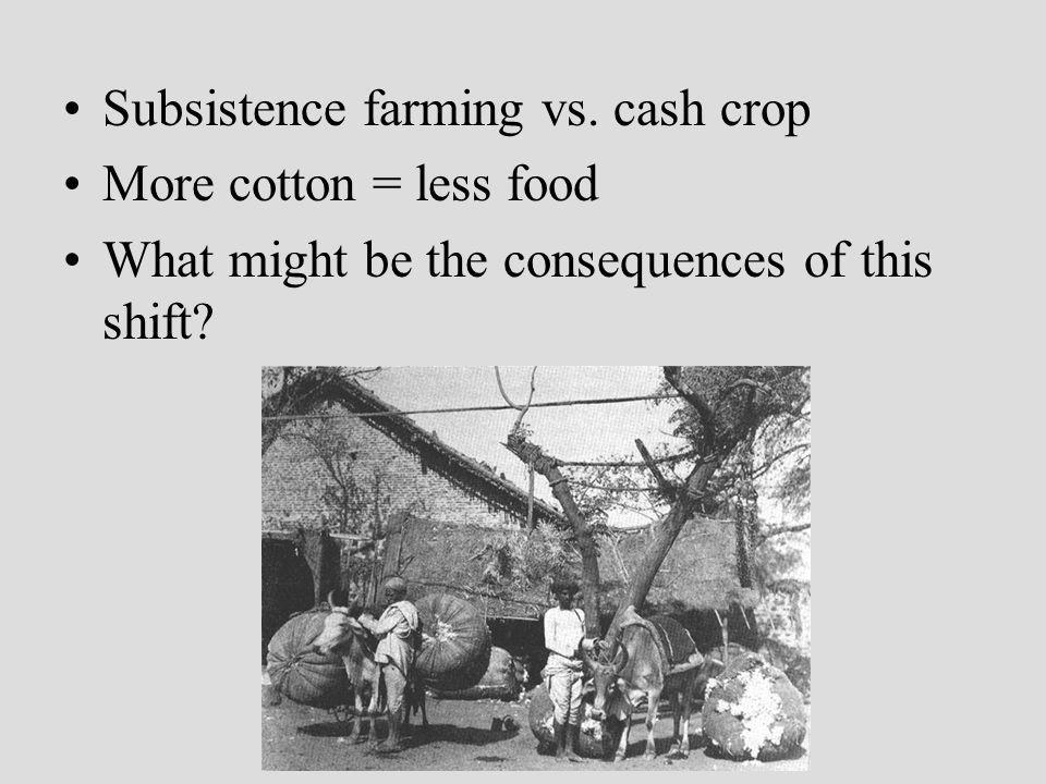 Subsistence farming vs. cash crop More cotton = less food What might be the consequences of this shift?