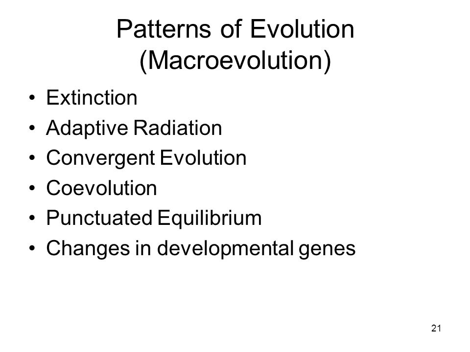Patterns of Evolution (Macroevolution) Extinction Adaptive Radiation Convergent Evolution Coevolution Punctuated Equilibrium Changes in developmental genes 21