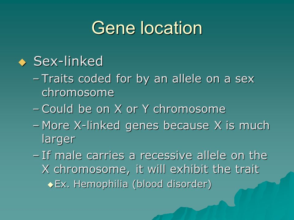 Gene location Sex-linked Sex-linked –Traits coded for by an allele on a sex chromosome –Could be on X or Y chromosome –More X-linked genes because X i