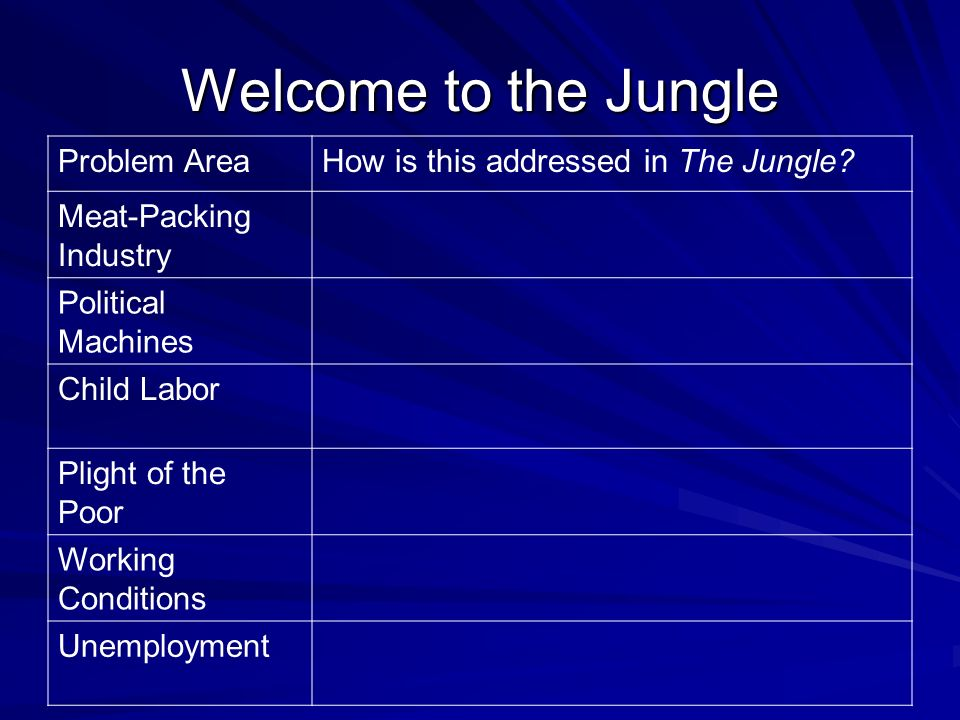 Welcome to the Jungle Problem AreaHow is this addressed in The Jungle.