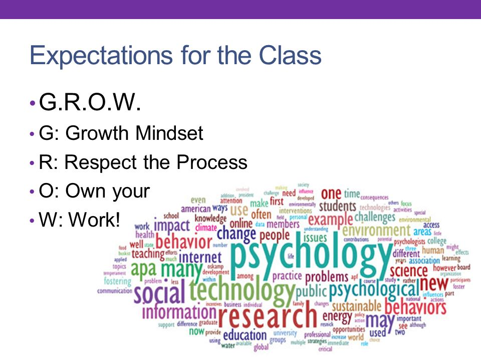 Expectations for the Class G.R.O.W. G: Growth Mindset R: Respect the Process O: Own your W: Work!