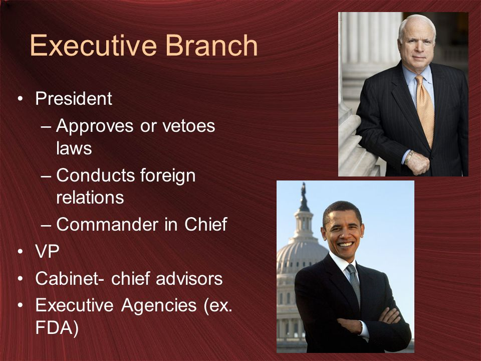 Executive Branch President –Approves or vetoes laws –Conducts foreign relations –Commander in Chief VP Cabinet- chief advisors Executive Agencies (ex.