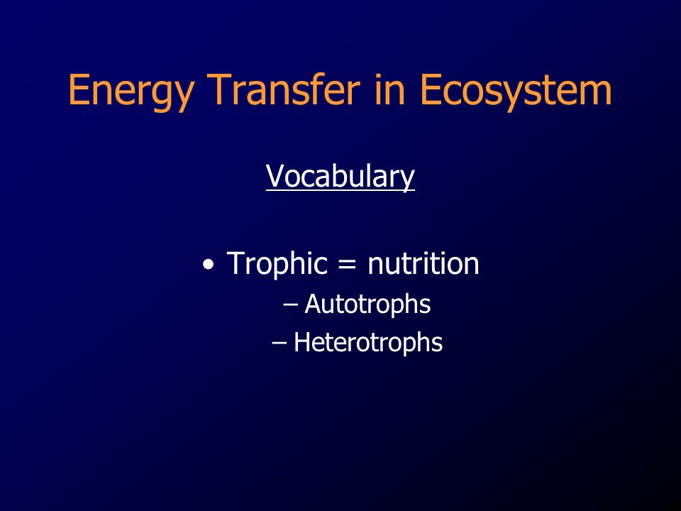 Energy Transfer in Ecosystem Vocabulary Trophic = nutrition –Autotrophs –Heterotrophs