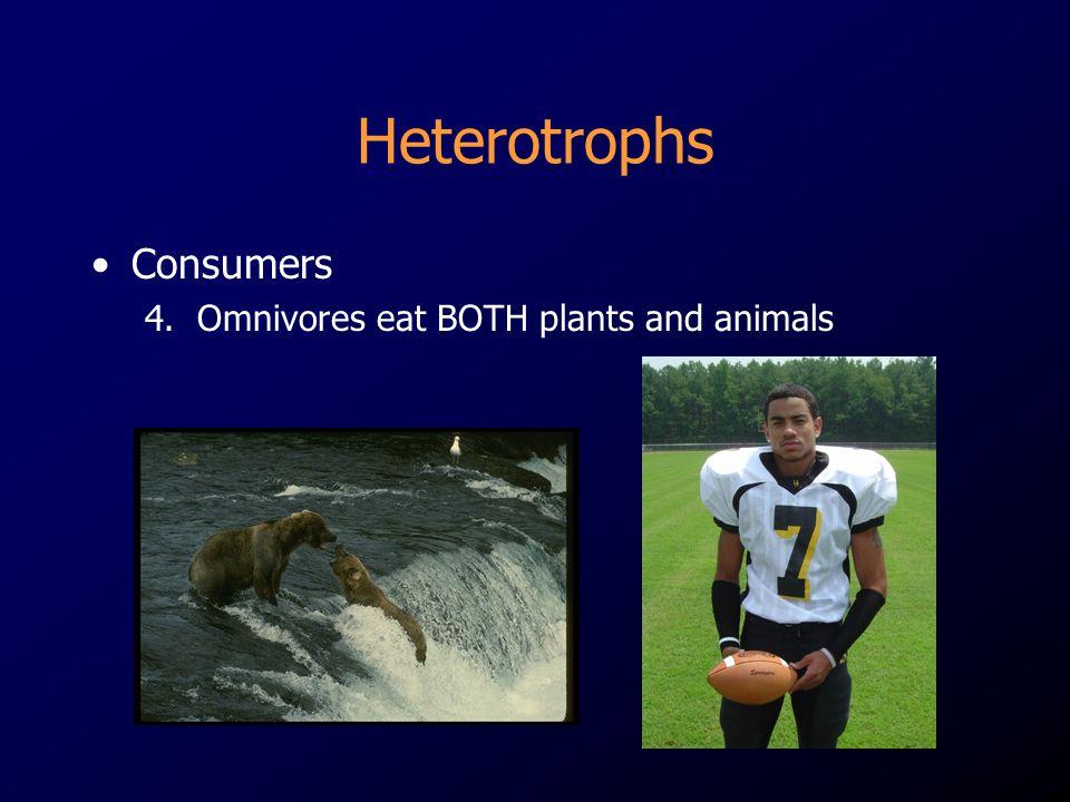 Heterotrophs Consumers 4. Omnivores eat BOTH plants and animals