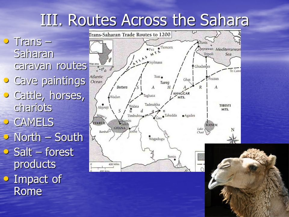 III. Routes Across the Sahara Trans – Saharan caravan routes Trans – Saharan caravan routes Cave paintings Cave paintings Cattle, horses, chariots Cat
