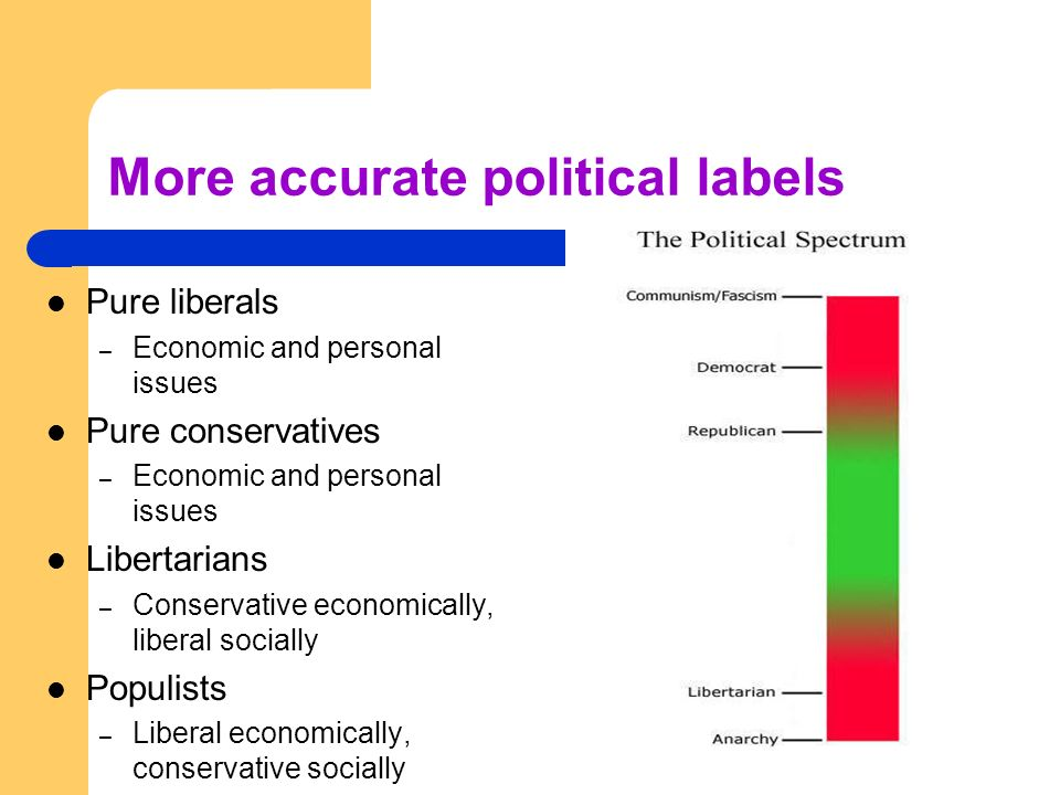 More accurate political labels Pure liberals – Economic and personal issues Pure conservatives – Economic and personal issues Libertarians – Conservat
